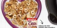 Cereale de ovaz Cheerios