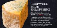 Cropwell Blue Shropshire Fromi