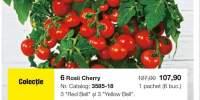 Tomate pentru gustari