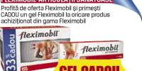 Fleximobil-Articulatii sanatoase
