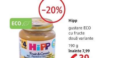 Hipp gustare Eco cu fructe