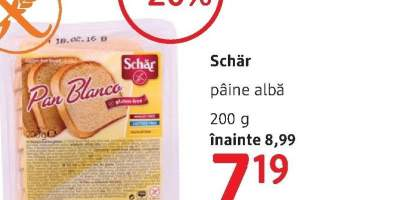Schar paine alba