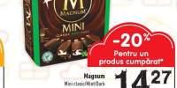 Inghetata Mini Magnum