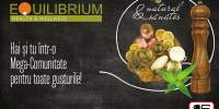 Equilibrium - health & wellness: Stamdevorba.ro