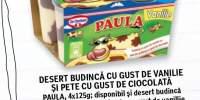 Desert budinca cu gust de vanilie si pete cu gust de ciocolata Paula