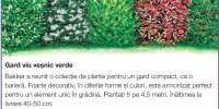 Gard viu vesnic verde